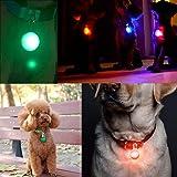 Osense Dog Cat Pet Collar LED Light 6Pcs,Clip-On