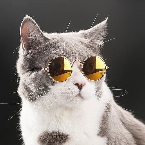 c8f5c416890d Amazon.com  Naladoo Pet Cat Dog Fashion Sunglasses UV Sun Glasses Eye  Protection Wear  Shoes