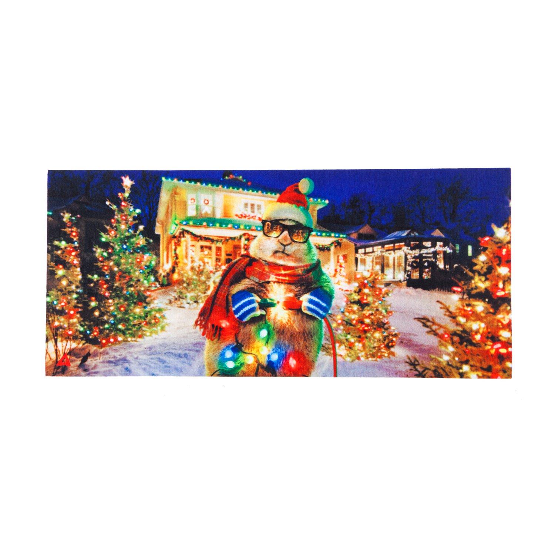 Evergreen Christmas Lights Sassafrass Decorative Mat Insert, 10 x 22 inches