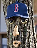 MLB Boston Red Sox Forest Face