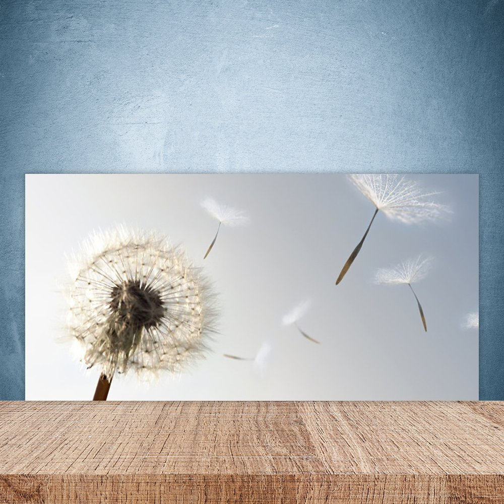 Glass Splashback for Kitchen by Tulup 100x50cm Splashback printed on Toughened / Tempered Safety Real Glass Theme: Dandelion Floral