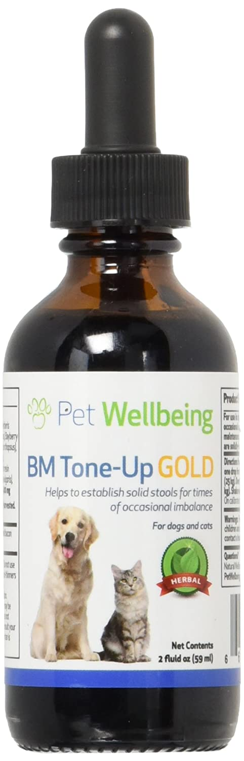 Amazon.com: Mascota bienestar – BM tone-up oro para gatos ...
