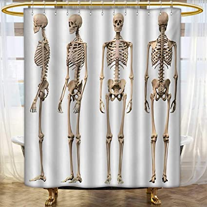 Lacencn Human AnatomyShower Curtains 3D Digital PrintingMan Male Skeleton Skull Different