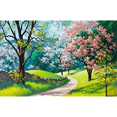1000PCS Jigsaw Puzzle Adults Kids, Large Rural Landscape Scenery Spring Country Road Blossoming Path Intellectual Educational Game, Art Project for Home Wall Decor: Toys & Games