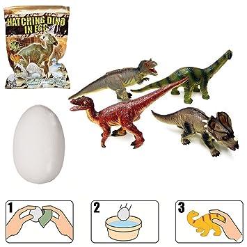 un oeuf de dinosaure magique il clot en 1h dans