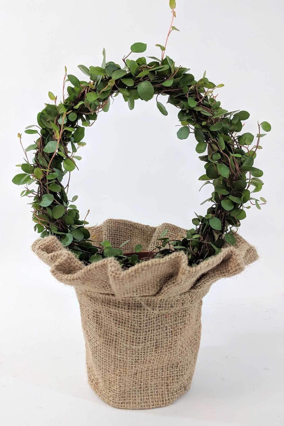 Angel Vine Wreaths in Skirted Burlap