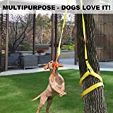 XiaZ Retractable Interactive Dog Toy, Rope Tug of War Toys for Medium or Large Dogs, Outdoor Hanging Exercise Play Tug…