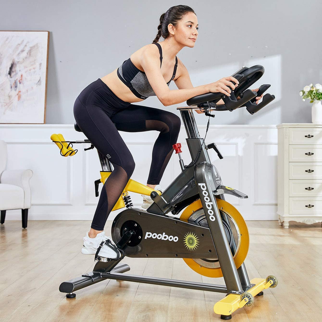 L NOW Indoor Exercise Bike Indoor Cycling Stationary Bike,Magnetic Resistance with 35 Lb Flywheel Belt Drive LCD Monitor Heart Rate Commercial Standard for Home Cardio Workout D501