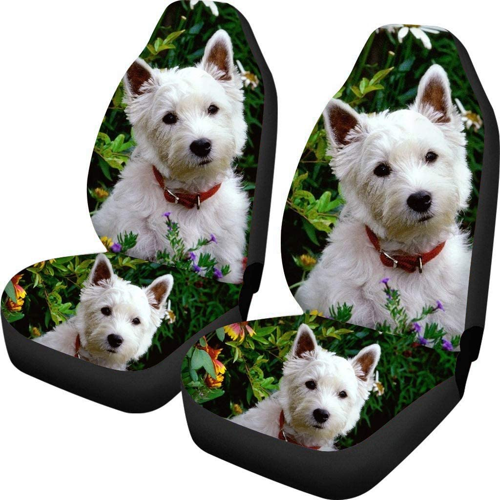 Coloranimal Panda Black Car Seat Cover Front Auto Protector Case for Pet Cushion Automobiles Use for Best Gift Women Men Universal Fit SUV Van 2pc set