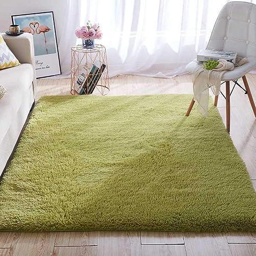 Wondo Soft Shaggy Area Rugs Modern Fluffy Bedroom Rug