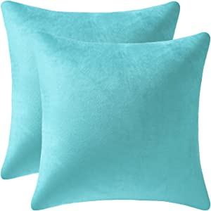 DUVAGE ThrowPillowCovers 18 x 18 in Decorative Pillow Covers, Square Velvet Throw Pillow Cases for Couch, Sofa Home Decorations Cushion Covers for Bedroom Living Room Car, Pack of 2 Aqua Green