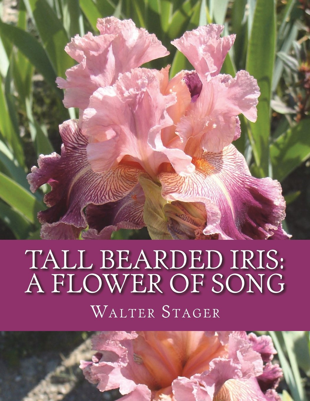 Tall Bearded Iris A Flower Of Song Walter Stager Roger Chambers