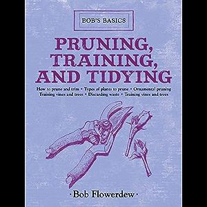 Pruning, Training, and Tidying: Bob's Basics