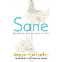 Sane: Mental Illness, Addiction, and the 12 Steps (English Edition)