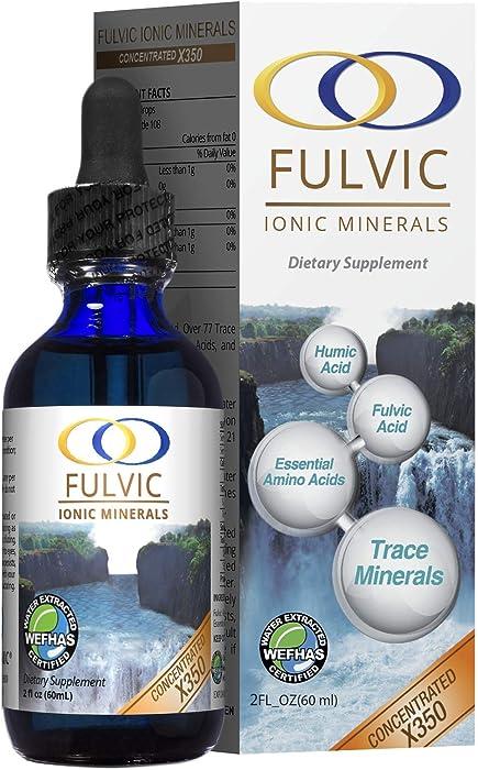 Top 8 Fulvic Acid Food