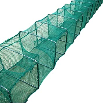 Red De Pesca Jaula Plegable para Peces Loach Shrimp Net: Amazon.es ...