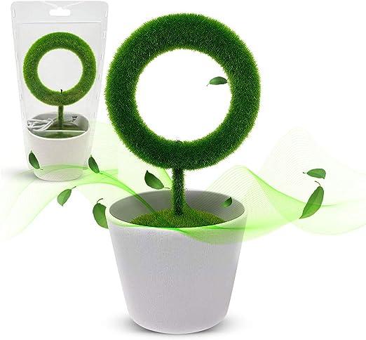 Purificador de aire de planta para escritorio, alérgenos ...
