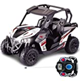 Haktoys HAK139 1:12 Scale RC Racing Cross Country Side-by-Side UTV Utility Vehicle with LED Lights   Great Gift Radio Control Rechargeable Car Toy for Kids, Boys, Girls, and ATV Enthusiasts Hobbyists