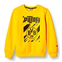 PUMA BVB Ftblcore Graphic Crew Sweat Jr Sudadera Niños