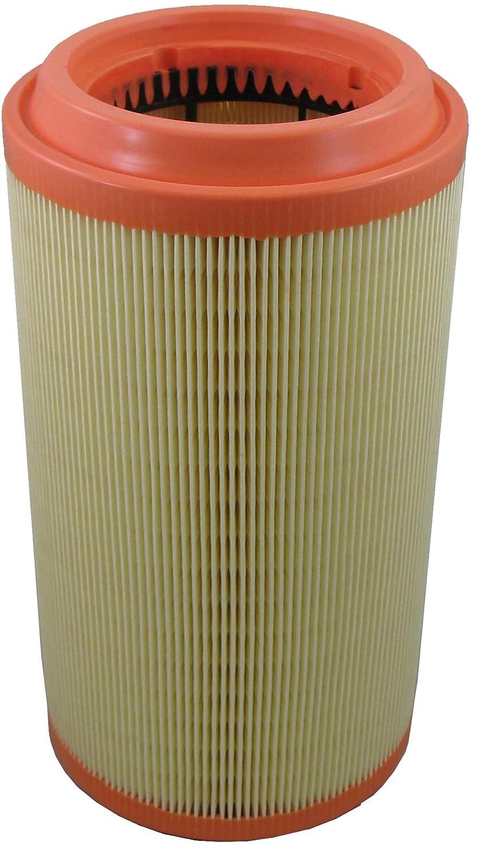 Pentius PAB11950 Air Filter
