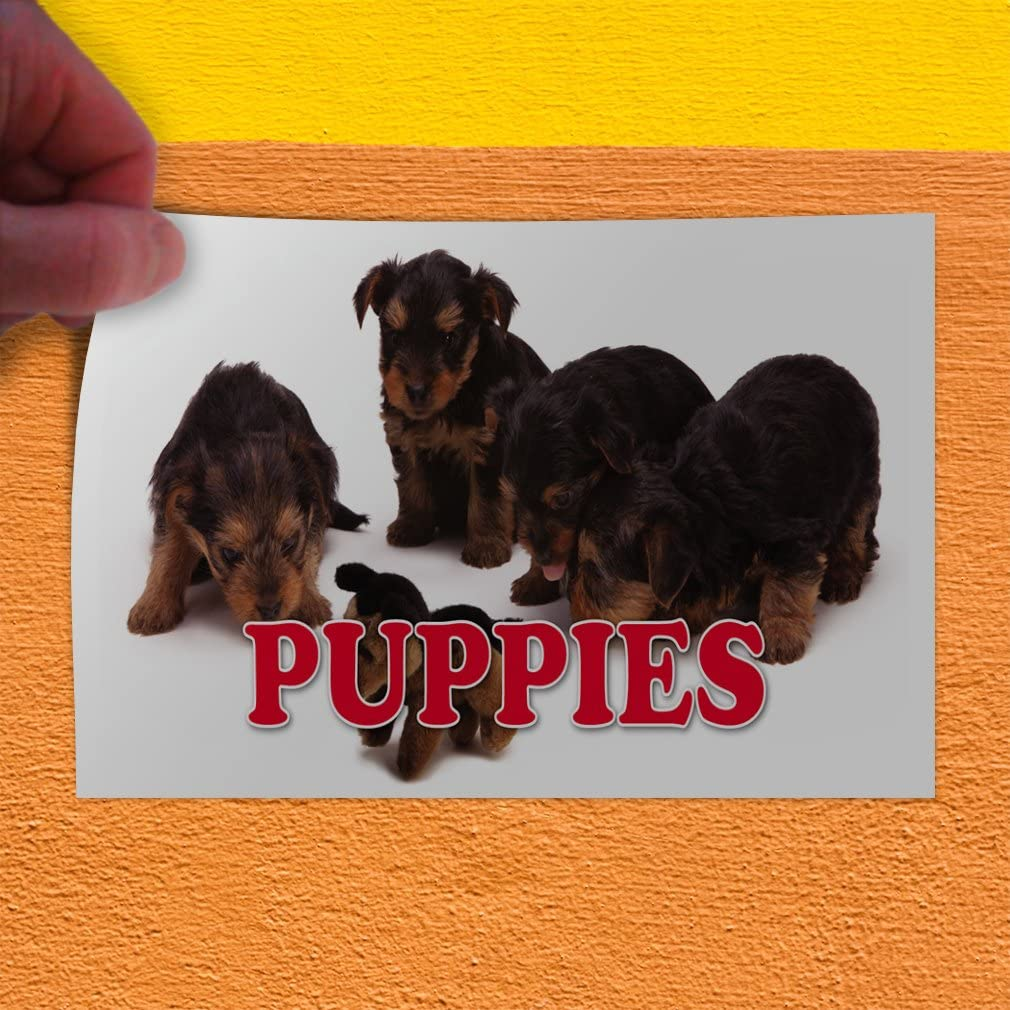 Decal Sticker Multiple Sizes Puppies #1 Style A Business Puppies Outdoor Store Sign White Set of 5 27inx18in