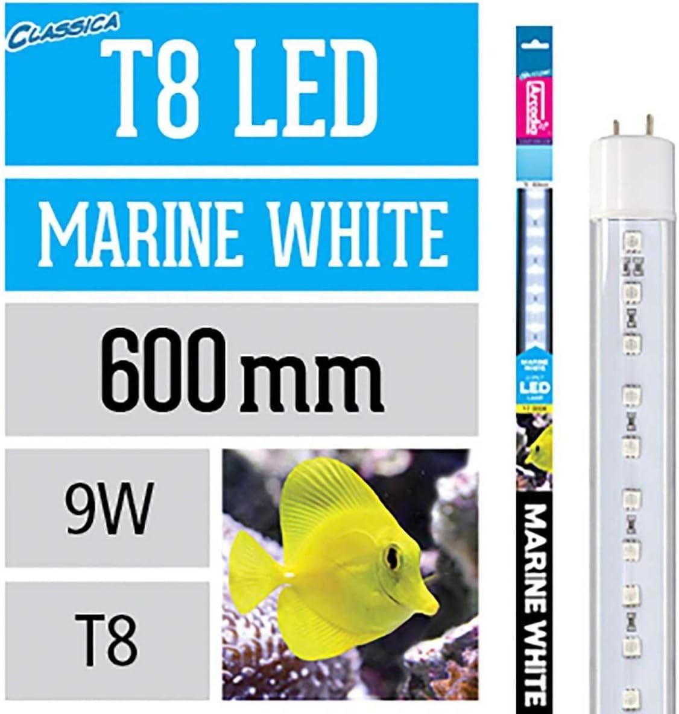 1050mm Arcadia Marine Blue T8 LED Lamp 36w