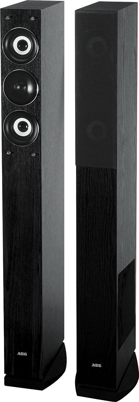AEG LB 4710 - Altavoces de torre (500 W, 3 vías, alámbrico), color negro