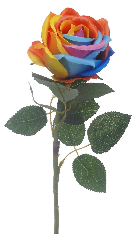 Amazon lily garden 21 artificial rainbow roses 6 stems flower amazon lily garden 21 artificial rainbow roses 6 stems flower bouquets rainbow b home kitchen izmirmasajfo Choice Image