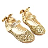 Amazon Price History for:YING LAN Girl Round-Toe Sparkle Bowknot Ballet Ballerina Flat Shoes