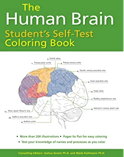 The Human Brain Coloring Book Coloring Concepts Series: Amazon.de ...