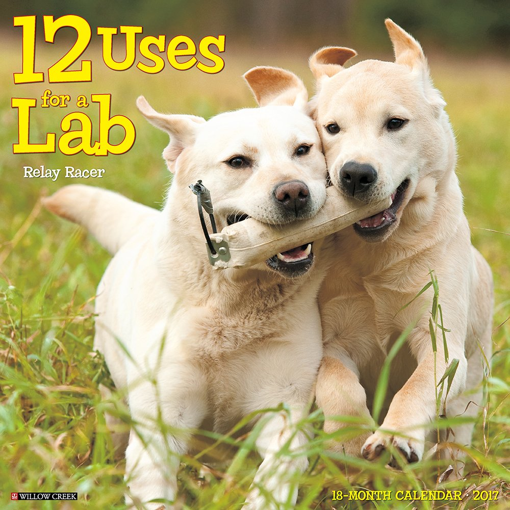 Download 12 Uses for a Lab 2017 Wall Calendar (Dog Breed Calendars) PDF