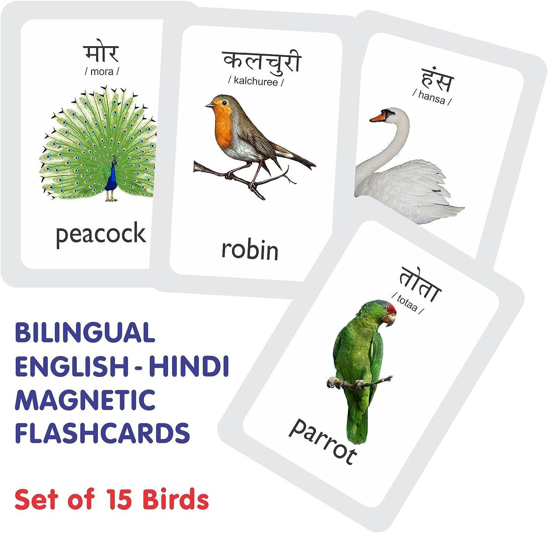 Amazon Com Mfm Toys Birds Magnetic Flashcards Bilingual English Hindi Flashcards Birds Toys Games