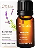 Gya Labs Lavender Essential Oil - Stress Reliever for Peaceful Sleep & Moisturized Skin (10ml) - 100% Pure Natural…