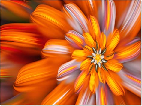 Designart Massive Orange Fractal Flower Floral Canvas Art Print Liukasimoret