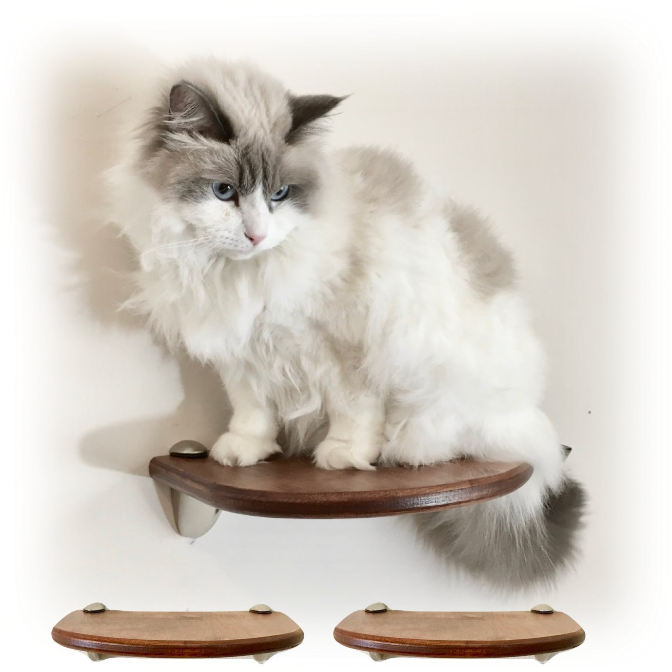 Lunar Floating Cat Wall Shelves - 2pc shelf set by Purrfectly Catastic | Handcrafted cat climbing perch | Space saving wall mounted cat furniture | Choice of wood finish