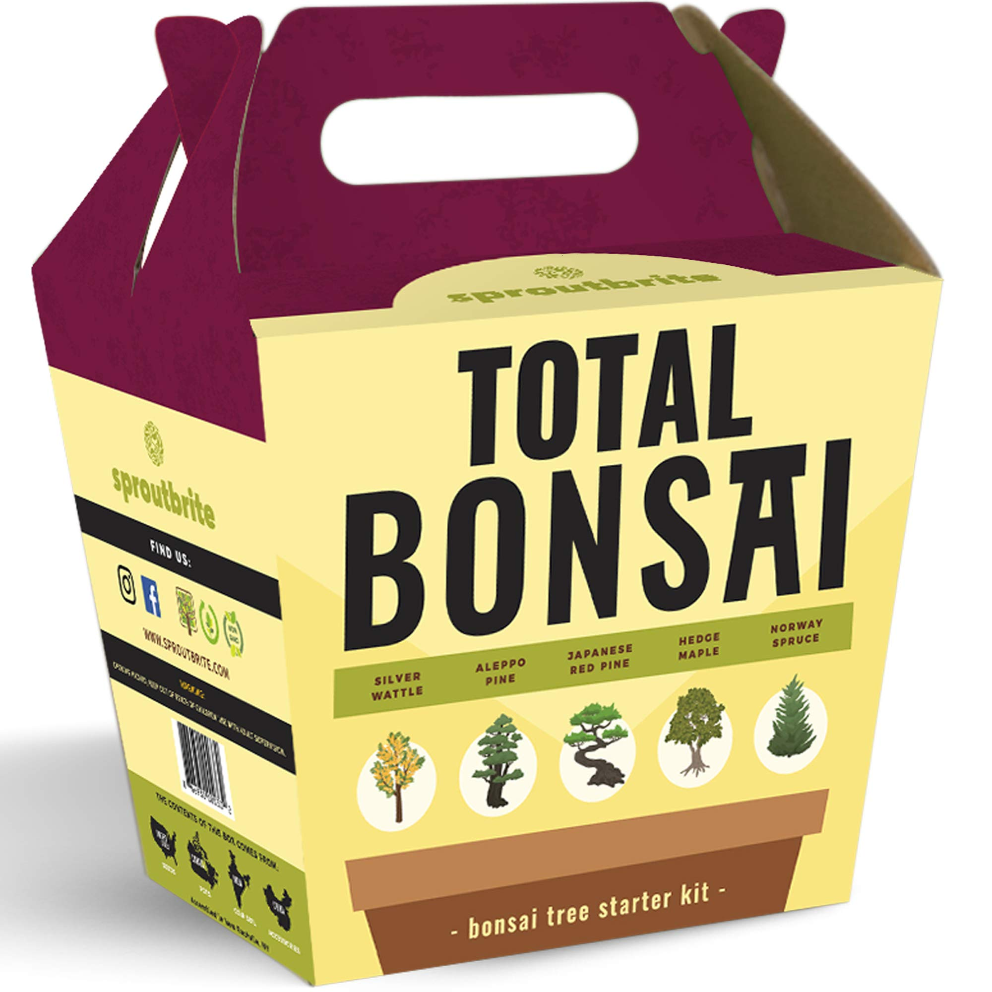 Sproutbrite Bonsai Tree Starter Kit - The 5 Easiest Trees to Grow from Seed Indoors - Complete Gardening Set with Comprehensive Instructions - DIY Mini Plant Growing Kit - Unique Gardening Gift by Sproutbrite