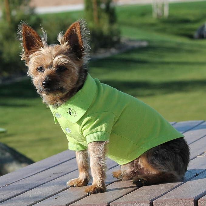 123757ee6 Amazon.com : DOGGIE DESIGN Solid Dog Polo Shirt (Ultra Violet, XL) : Pet  Supplies