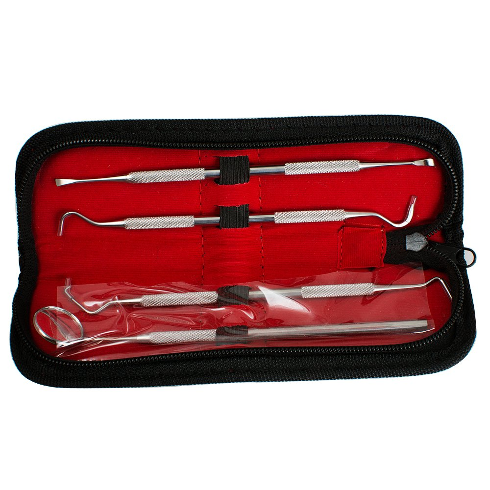 Dental Tool Stainless Steel Tarter Remover Dental Pick Hygiene Set Both For Dentist and Personal Use 4pcs with bag