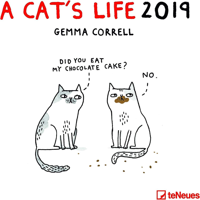 Calendario 2019 BD Humor gato – Dibujo Cat s Life- humour- formato 30 x 30 cm (TN) + incluye un – Agenda de bolsillo 2019: Amazon.es: Oficina y papelería