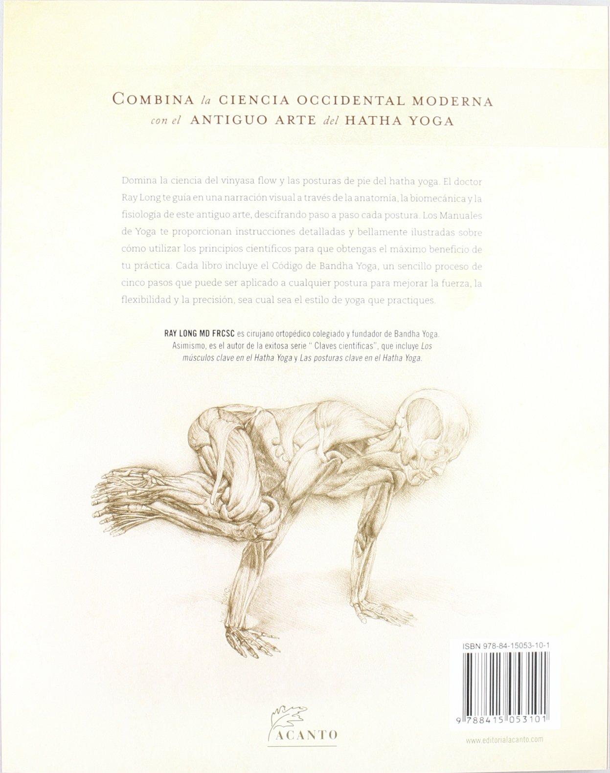 Anatomía para vinyasa flow y posturas de pie Manuales De ...