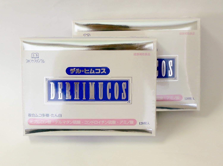 デルヒムコス 120粒2箱 B009X0FRVK