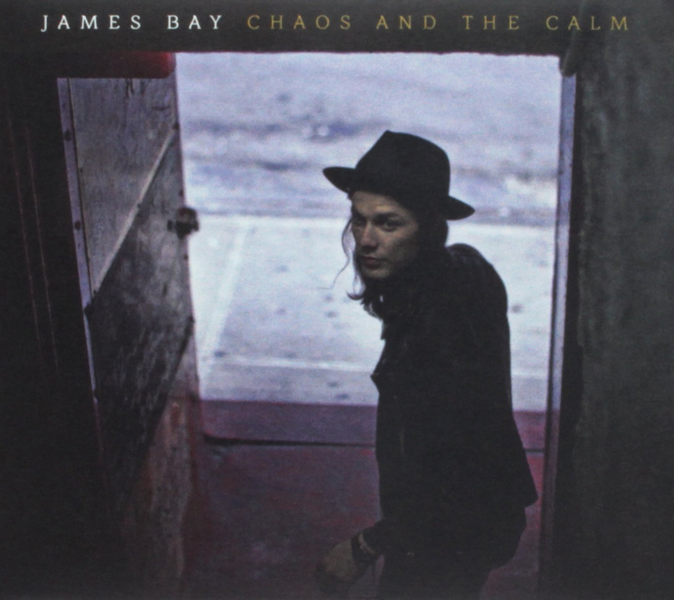 James Bay - Chaos and The Calm (Indie Exclusive)