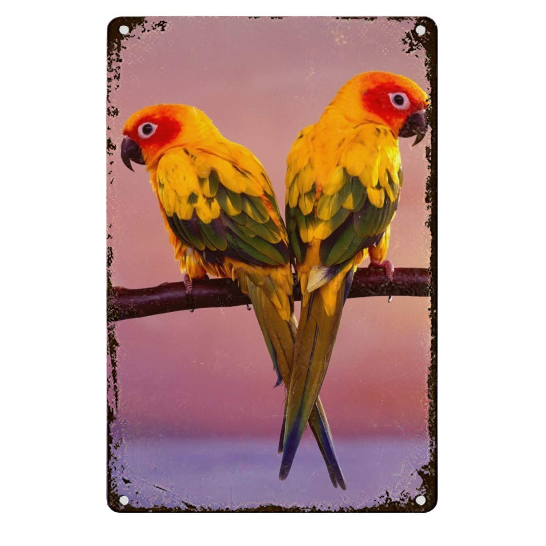Amazon com: Zogpemsy Lovely Parrots Wall Decor, Unique Metal