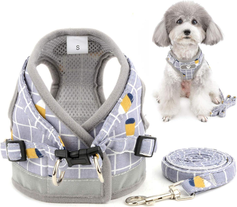 Zunea Arnés perro pequeño con Correa, ajustable reflectante chihuahua chaleco arneses de malla acolchada a prueba de escape chaqueta para cachorro para niños y niñas perros y gatos Gris S
