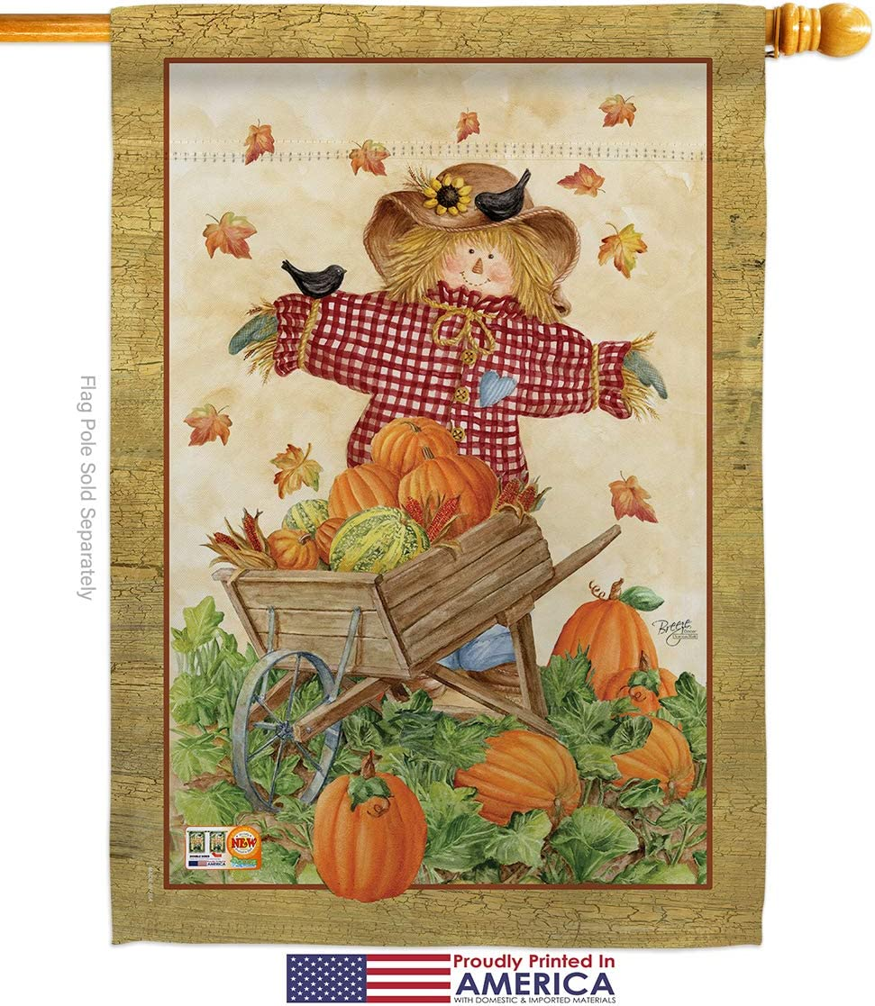 Breeze Decor Harvest Autumn Scarecrow Garden House Flags Kit Fall Pumkins Sunflower Leaves Season Autumntime Gathering Small Decorative Gift Yard Banner Made In Usa 28 X 40 Garden Outdoor