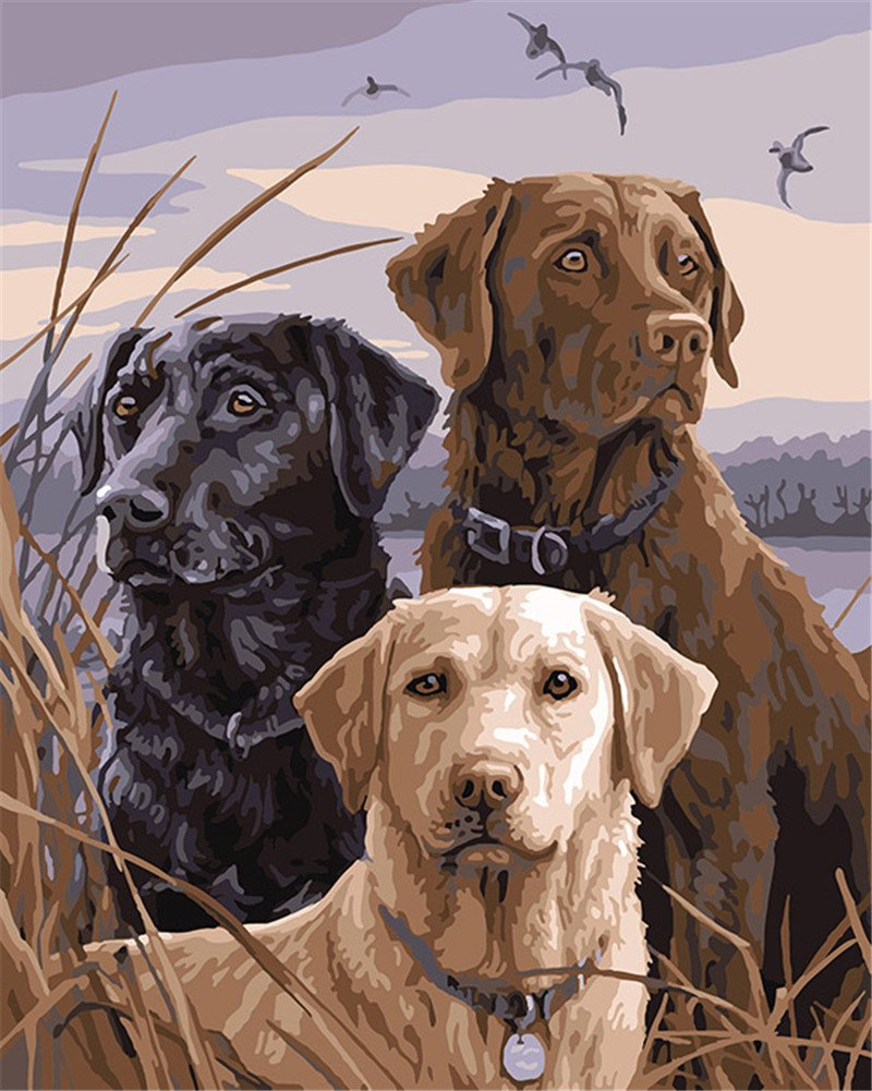 CaptainCrafts New Paint by Numbers 16x20'' for Adults, Kids LINEN Canvas - African Lion Dogs, Three Dogs (With Frame) by CaptainCrafts