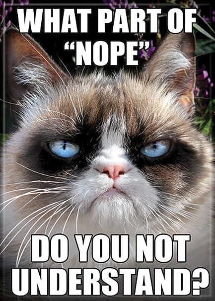 Amazoncom Ata Boy Grumpy Cat What Part Of Nope 25 X 35