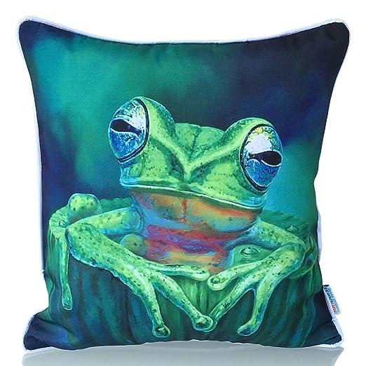 Sunburst vida al aire libre diseño de la rana Gustavo manta decorativa almohada cojín funda para sofá, cama, sofá o Patio – Único caso, no Insertar, ...