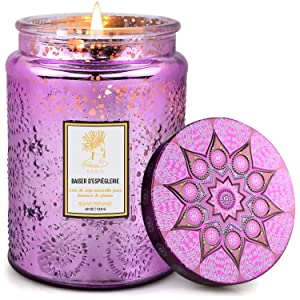 Scented Candle, 18 Oz Luxury Soy Wax Candle with a Fresh Scent of French Cade and Lavender, 100-Hour Combustion Highly Scented Aromatherapy Candle with Embossed Glass Jar for Home Use and Gifting