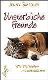 Unsterbliche Freunde: Wie Tierseelen uns beschützen